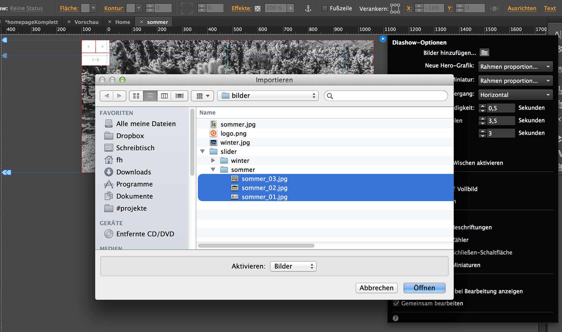 Adobe Muse: Slideshow integrieren und gestalten